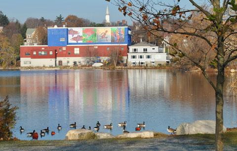Spy Pond Mural imagined